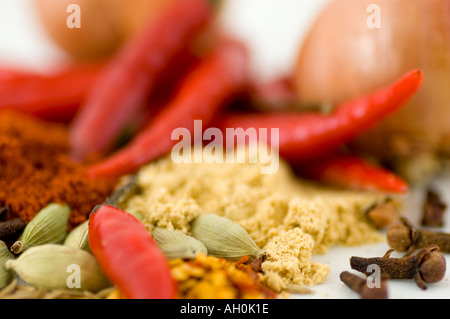 A selection of spices and chilli peppers against a white background - Stockfoto