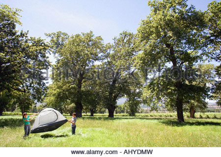 Young couple standing in mid distance assembling dome tent on camping trip in woodland clearing - Stock Photo