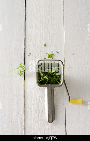 Parsley and a herb mill - Stock Photo