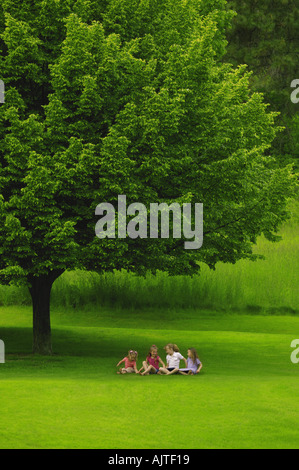 Four young friends under a tree - Stock Photo