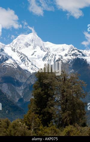 Mount Tasman from near Lake Matheson, Fox Glacier, South Island, New Zealand - Stock Photo