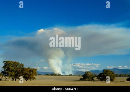 Huge mushroom cloud from controlled burn in Grampians National Park - Stock Photo