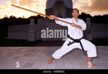 PICTURE CREDIT DOUG BLANE Instructor Sean Roberts practicing Karate at the Nippon Myohoji Buddhist Peace Pagoda - Stock Photo