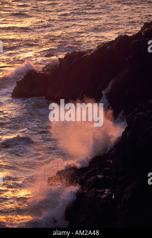 Wave crashing on coastal rock at sunset Marin California coast pacific Ocean - Stock Photo