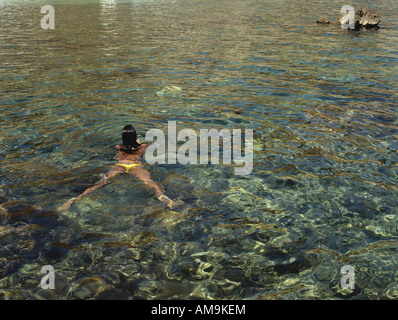 Woman swimming in the water. - Stock Photo