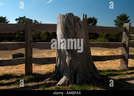 Tree stump and wooden fence at Gulf Station Yarra Valley pioneer working farm and National trust property Victoria - Stock Photo