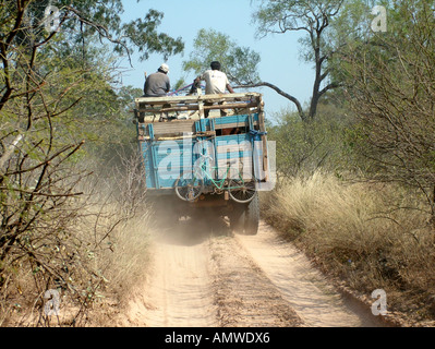 Dangerous truck with cattle loding on a lonely sandy road at the deserted border between Paraguay and Bolivia, Gran - Stockfoto