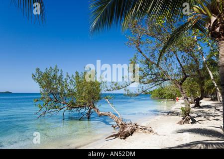 Beach outside Riu Negril Hotel, Bloody Bay, Negril, Jamaica, Caribbean, West Indies - Stock Photo