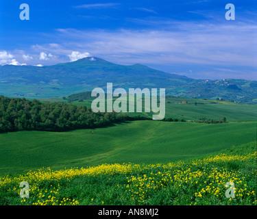 Springtime in Tuscany, Italy - Stock Photo