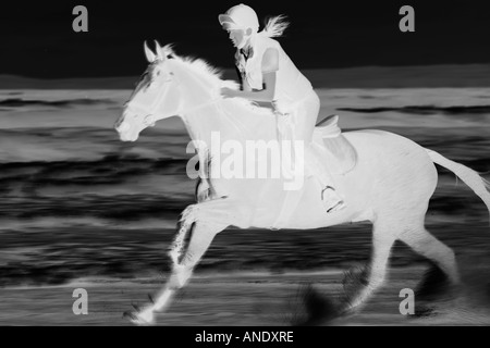 Woman rides horse at a gallop through the waves on Broad Haven Beach Wales United Kingdom - Stockfoto