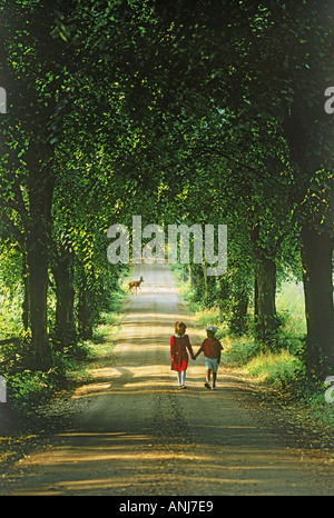 Deer crossing behind boy and girl on country road in summer - Stock Photo