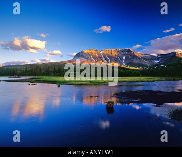 Sofa Mountain Reflects in Beaver Pond in Waterton Lakes National Park in Alberta Canada - Stock Photo