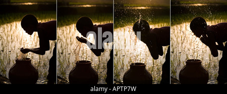 Silhouette of an Indian boy face washing from a clay pot next to of a rice paddy field . India. Sequence - Stock Photo