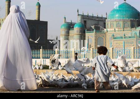Lady in burqa feeding famous white pigeons whilst child chases them, Shrine of Hazrat Ali, Mazar-i-Sharif, Balkh, - Stock Photo