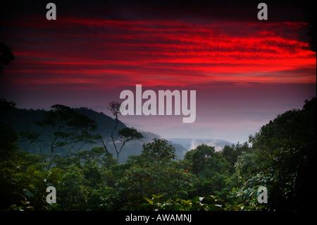 Colorful skies at dawn at Cerro Pirre in Darien national park, Darien province, Republic of Panama. - Stock Photo