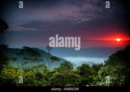 Dawn at Cerro Pirre in Darien national park, Darien province, Republic of Panama. - Stock Photo
