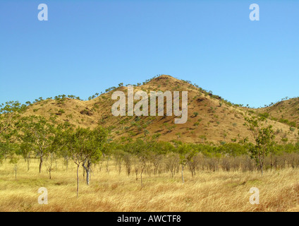 Red hill, Northern Territories - Stock Photo