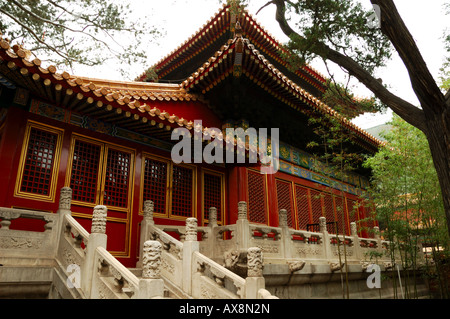 A building in the Forbidden City, Beijing, China. - Stockfoto