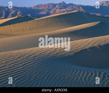 Mesquite Flats sand dunes in Death Valley National Park, California - Stockfoto