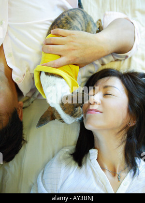 High angle view of a mid adult couple lying on the bed with a Chihuahua puppy - Stockfoto
