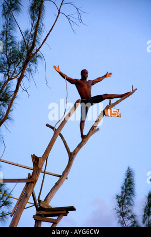 Jamaica Negril Ricks Cafe Cliff Diver jumping from a Tree - Stock Photo