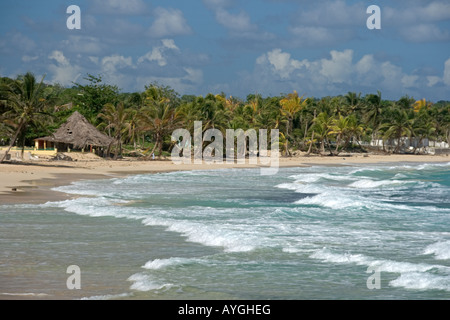 Jamaica Long bay at east coast after Hurricane Dean destroyd palm trees and beach bars and houses - Stock Photo