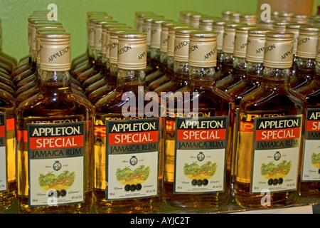 Jamaica Appleton Jamaica Rum factory district St Elisabeth - Stock Photo