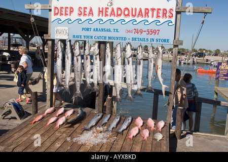 Uss lexington museum on the bay north beach corpus for Corpus christi deep sea fishing