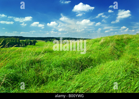 Saturated summer landscape - green grass on the top of the hill. Mazury, Poland. - Stock Photo