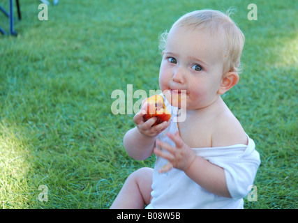 toddler baby eating peach nectarine [outside] - Stock Photo
