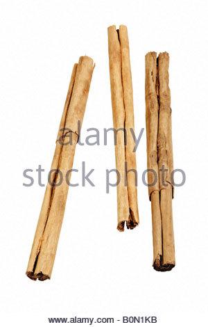 Cinnamon sticks (Cinnamomum verum). - Stock Photo