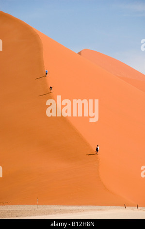 Dune 45 is the only dune in Sossusvlei Namib desert where people are allowed to climb on. - Stock Photo