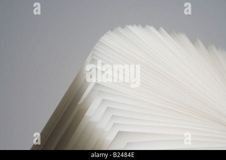 Pages of an open book - Stock Photo