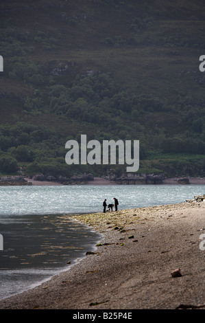 People with a dog on the beach in Ullapool, Scotland - Stock Photo