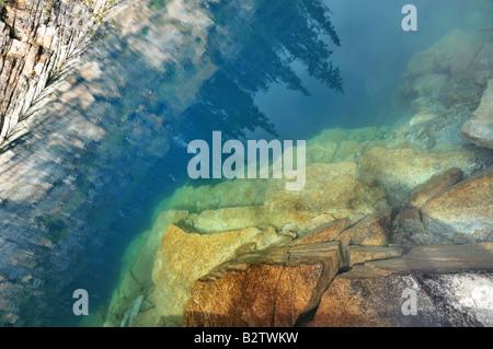 Horseshoe Lake, Jasper National Park, Alberta, Canada - abstract from water - Stock Photo