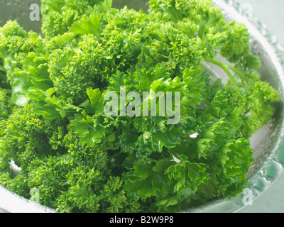 Parsley in a bowl - Stock Photo