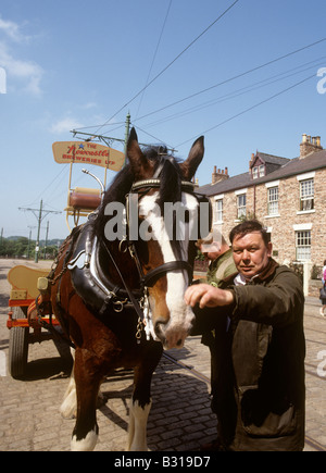 UK England County Durham Beamish Open Air Museum brewery dray and shire horses - Stock Photo