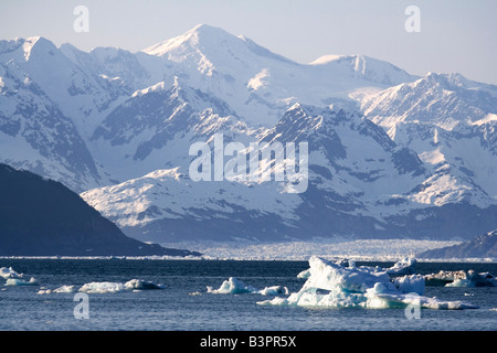 Drifting ice blocks, Columbia Bay, Columbia Glacier in the back, Pacific Coast, Prince William Sound, Alaska, USA - Stock Photo