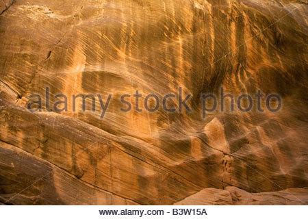Natural texture sandstone wall rock Willis Creek Grand Staircase Escalante National Monument Utah - Stock Photo