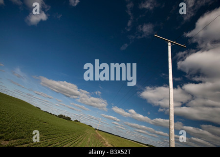 Power lines in a prairie field - Stock Photo