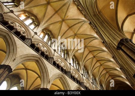 Salisbury Cathedral Wiltshire England - Stock Photo