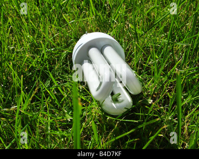 Energy Saving Lightbulb On Grass Stock Photo Royalty Free Image 18201939 Alamy