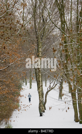 winter in the forest - winter jogging - Stock Photo