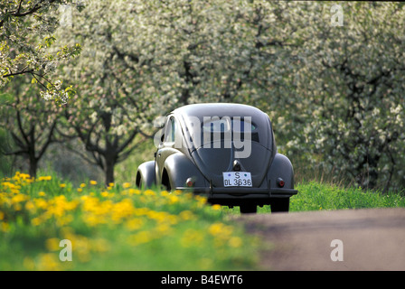car vw volkswagen beetle typ 1 pretzel beetle sedan vintage stock photo 19996594 alamy. Black Bedroom Furniture Sets. Home Design Ideas