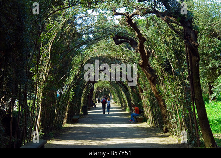 The Boboli Gardens Florence Stock Photo: 142238144 - Alamy