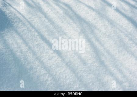 Shadows on snow - Stock Photo