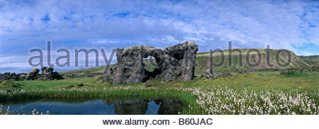 Bizarre lava formation surrounded by cotton grass, water reflection in a small pool, near Skafta River, lava field - Stock Photo