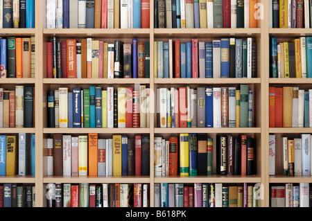Book shelves - Stock Photo