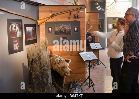 Finland, Kuhmo, Petola Visitor Center. Information about Finland's largest carnivores and preditors, like bear, - Stockfoto