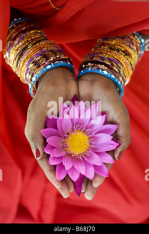 Indian woman offering a Nymphaea Tropical waterlily flower in her cupped hands. India - Stock Photo